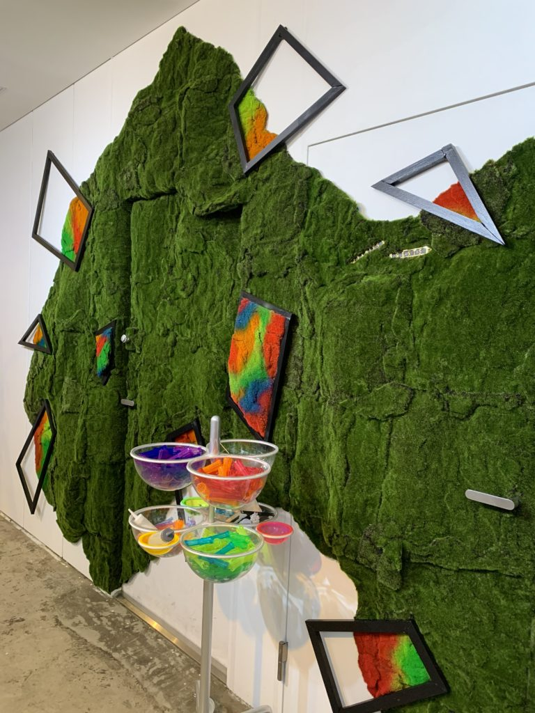 Wall moss art Display